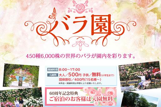 おかげさまで開園60周年【花巻温泉バラ園】