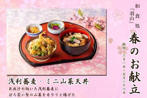 【ランチ限定】和食処「羽山」 春のお献立