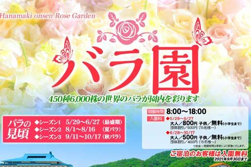 【花巻温泉バラ園】バラの見頃 ~ シーズン1 ~