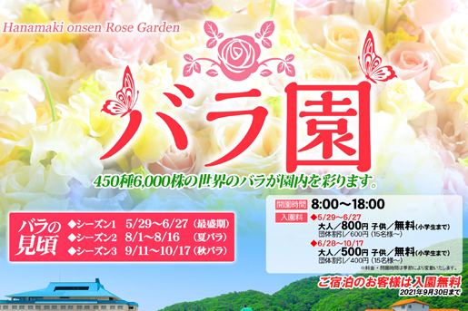【花巻温泉バラ園】バラの見頃 ~ シーズン2~