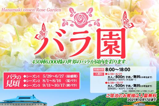 【花巻温泉バラ園】バラの見頃 ~ シーズン3~