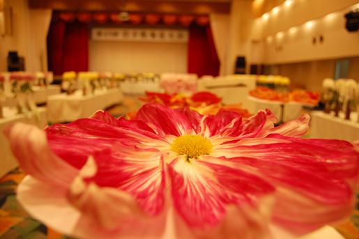 第48回 岩手県菊花大会 一般公開