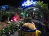 キラキラの夜のバラ園をおさんぽだホー♪