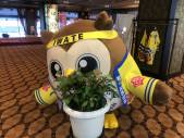 かわいいお花をみつけたホー☆