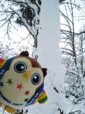 雪がいっぱいふったホ~!