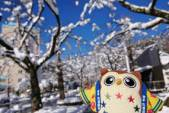 真っ白でふわっふわの雪だホ~★