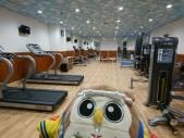 フィットネスルームで運動するんだホー!