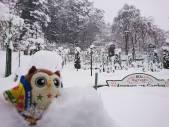 雪がたっぷりつもったホー!