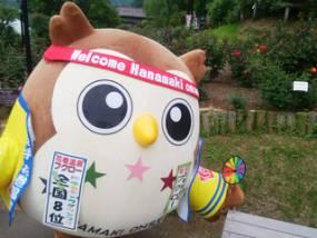 花巻温泉バラ園 開花状況(2018/5/30)