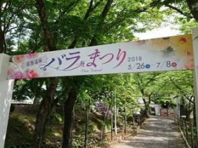 花巻温泉バラ園 開花状況(2018/5/26)
