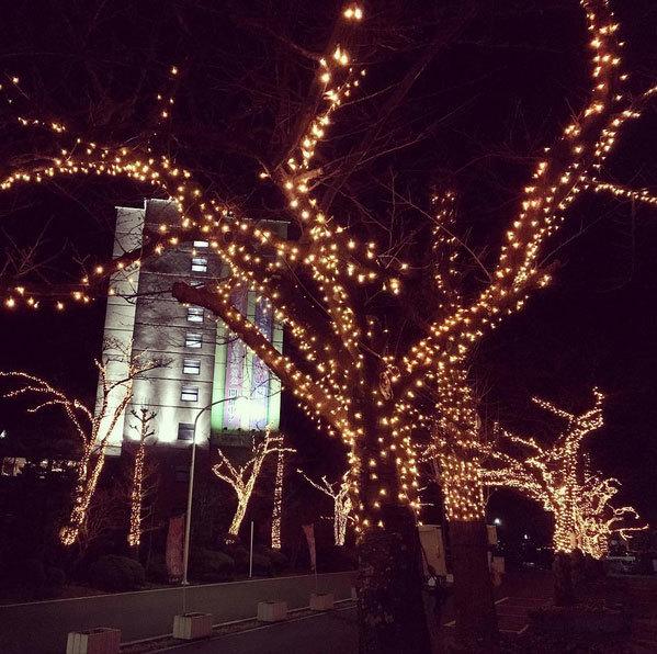 花巻温泉のイルミネーション&ライトアップ開催中