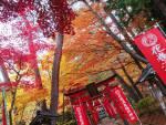 紅葉の花巻温泉へ♪秋色モードなう!(2018/11/8)