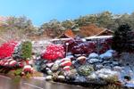白銀の花巻温泉へ! 紅葉 in 雪