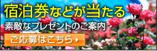 花巻温泉 宿泊券プレゼント